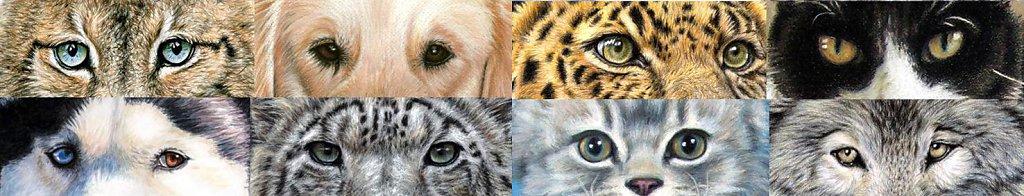 AnimalEyes-quer.jpg